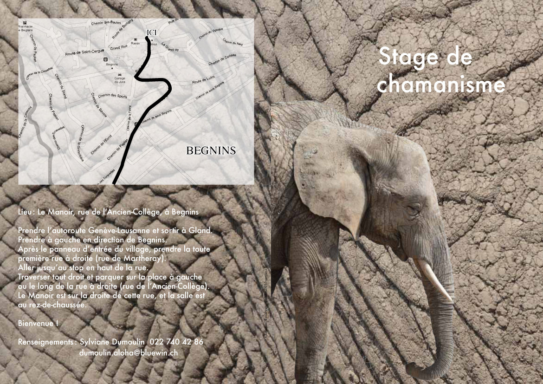 Stage Bison éléphant-1