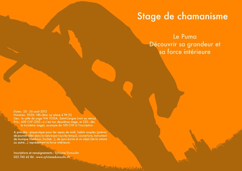 Stage Puma - Sylviane Dumoulin -