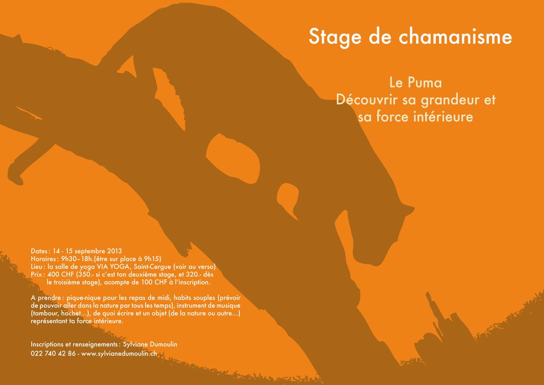 Stage le Puma 2013