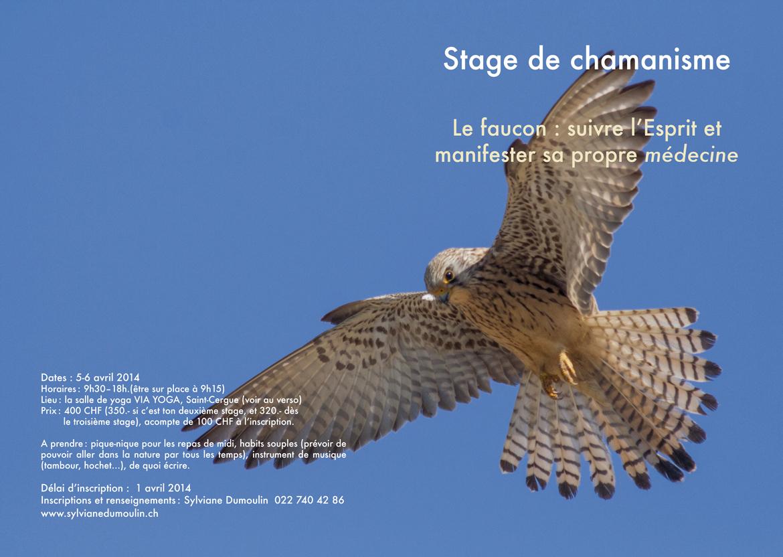 Stage Le Faucon 2014
