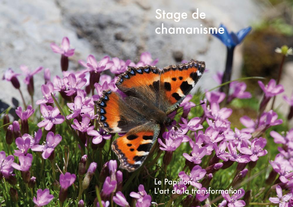 Stage Le Papillon 2014