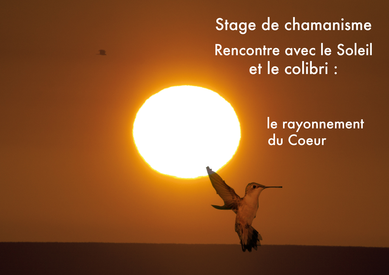 Stage le Soleil 2014