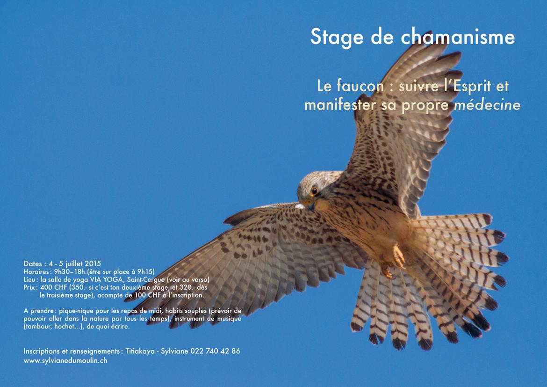 Stage le Faucon 2015
