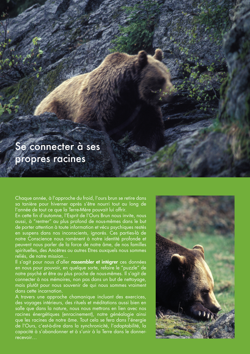 Stage l'Ours 2015