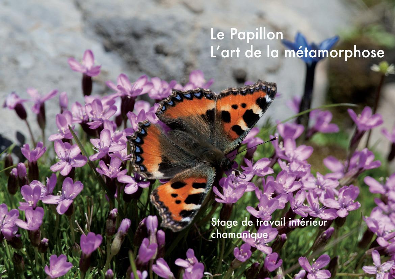 Le-Papillon (7-16)