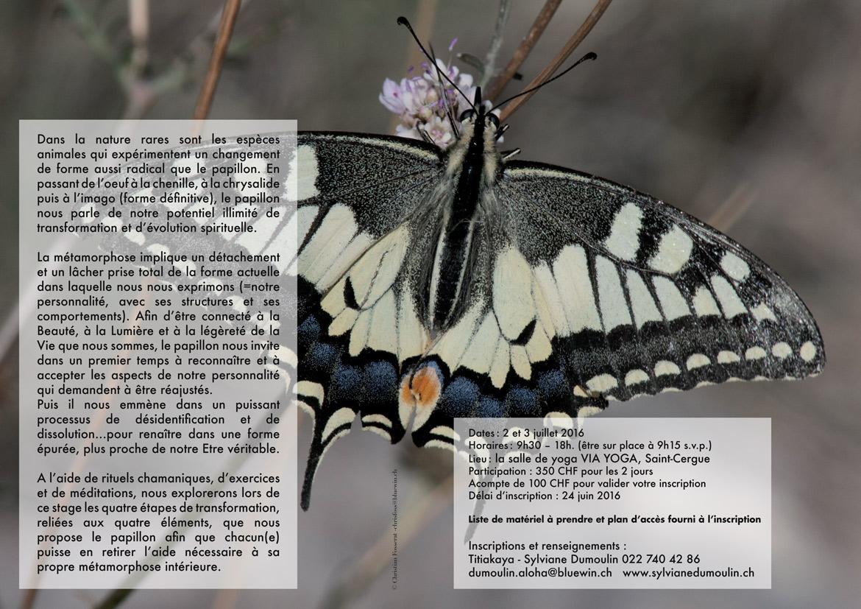 Le-Papillon2016HD-2